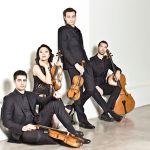Palmetto Chamber Orchestra: Mozart and Salieri